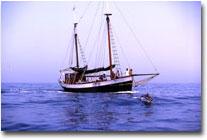 Else, el barco de Anse.