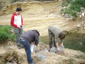 Voluntarios y Monitores examinan las trampas donde se capturaron los cangrejos. /ANSE