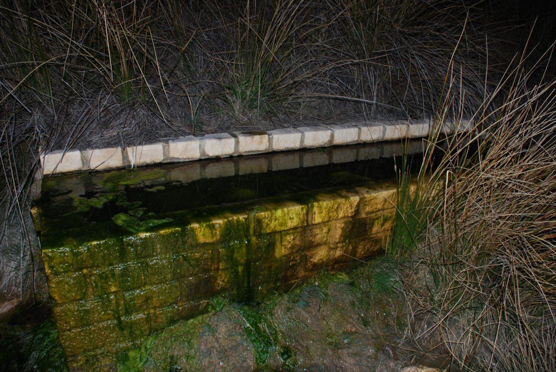 Las acequias y abrevaderos son puntos de agua permanentes donde pueden criar los anfibios. /ANSE