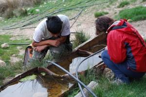 Los voluntarios visitaron distintos puntos de agua durante la mañana del sábado /ANSE