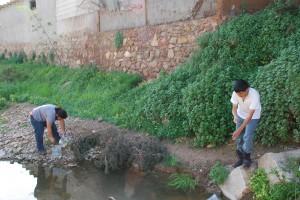 Voluntarios extrayendo las trampas para el muestreo de fauna acuática y la extracción de especies exóticas. /ANSE