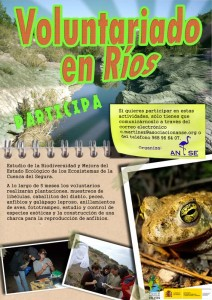 Cartel_Voluntariado/ANSE