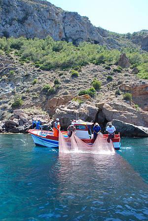 Pesca artesanal en Cabo Tiñoso