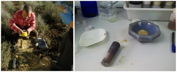 Muestreos y análisis de las características físico-químicas del suelo, para conocer el estado inicial y medir los efectos de las actuaciones posteriores