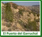 El Puerto del Garruchal