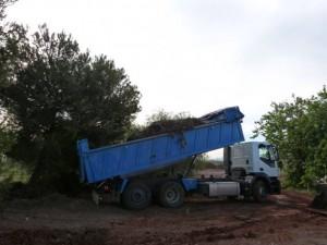 compostaje de EEI en el recinto del humedal