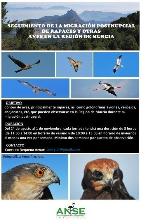 Migración postnupcial 2013-Murcia