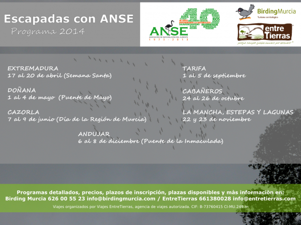 programacion-anse-2014