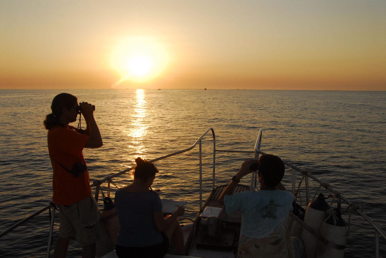 Observadores desde el Orca en San Pedro del Pinatar