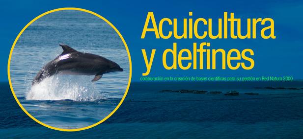 Proyecto acuicultura y delfines