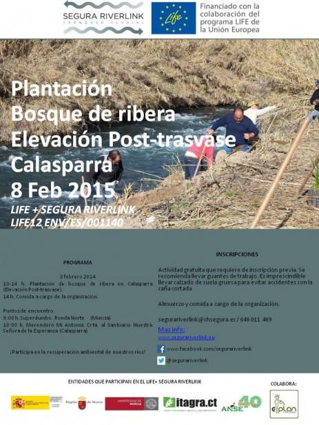 plantacion_8_feb
