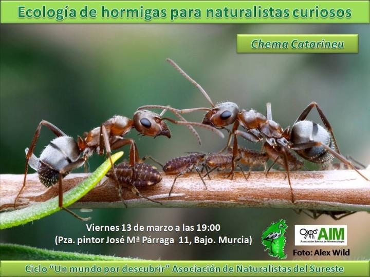 2015 Ecología de hormigas para naturalistas curiosos
