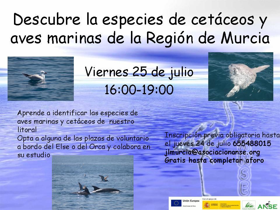 Descubre la especies de cetáceos y aves marinas.2.2