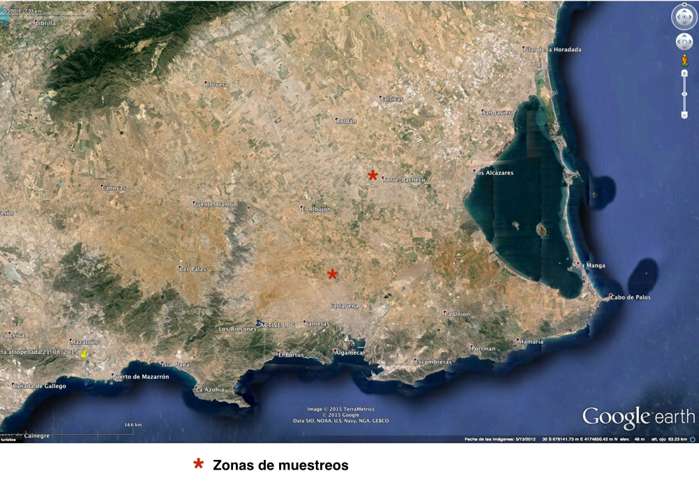 Mapa 1. Localización de las zonas de muestreo en el Campo de Cartagena, agosto 2015