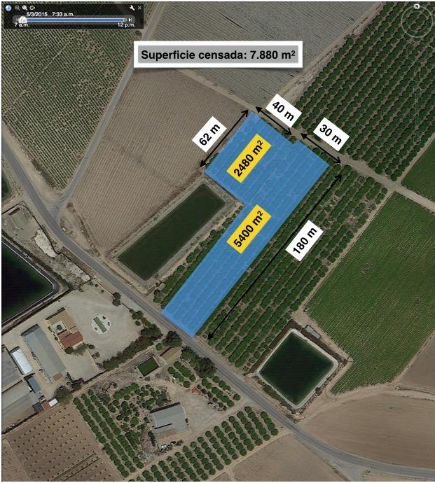 Mapa 3. Localización de las parcelas de muestreo en el Municipio de Torre Pacheco, agosto 2015