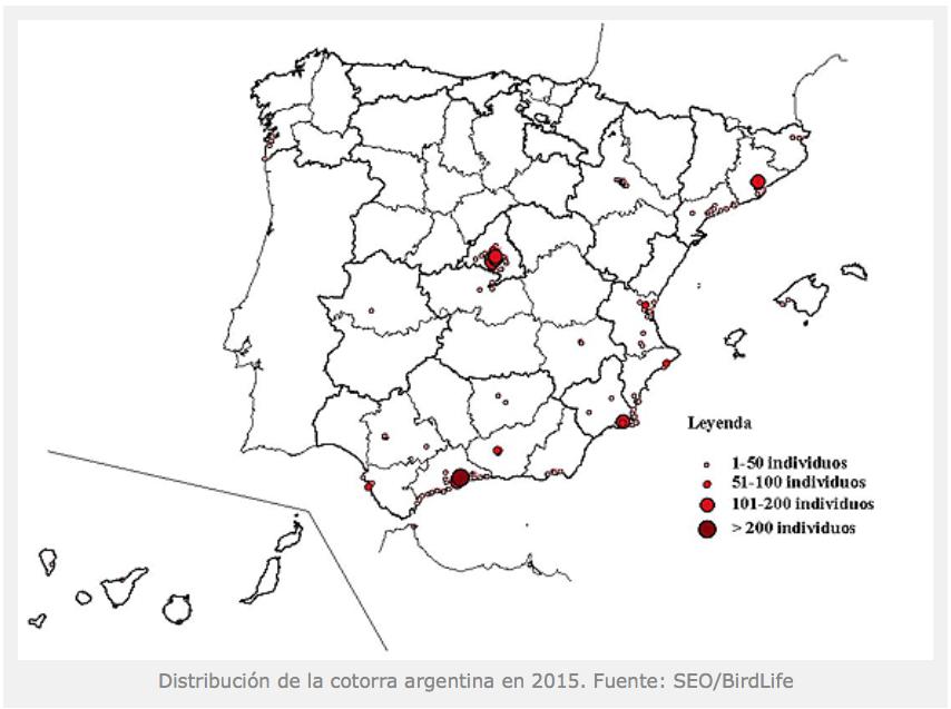 Distribución de la abundancia de Myiopsitta monachus en España (I Censo Nacional, 2015)