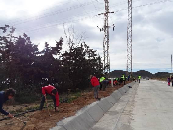 voluntarios_calblanque_tetraclinis
