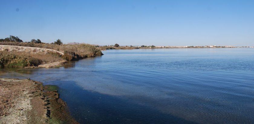 Desembocadura del Albujon