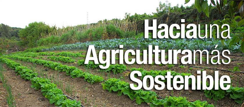 Hacia una agricultura sostenible