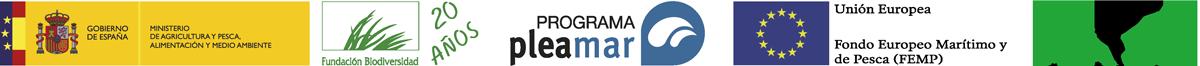 LogosPleamar