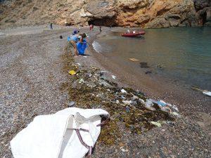 Limpieza Salitrona Cabo Tiñoso