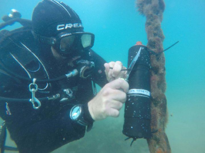 Colocación de receptor anguilas