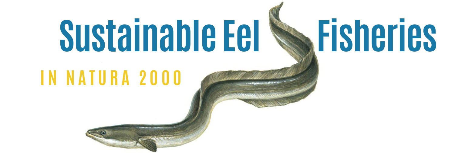 Sustainable Eel Fisheries in Natura 2000
