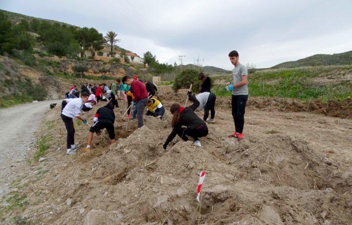 Plantación en Rambla del Cañar