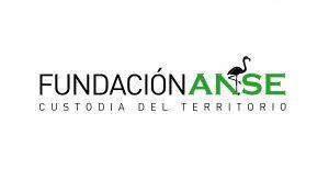 Logo Fundación ANSE
