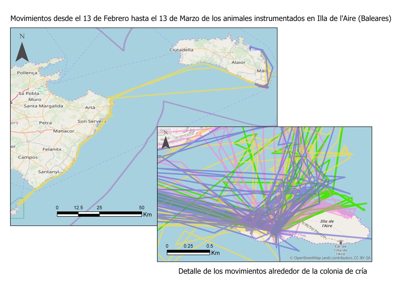 Mapa cormoranes Isla Aire