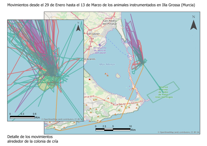 Mapa cormoranes Isla Grossa